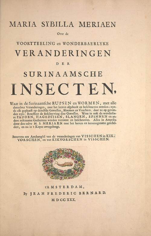 Maria Sybilla Meriaen Over de voortteeling en wonderbaerlyke veranderingen der Surinaamsche insecten by Maria Sibylla Merian